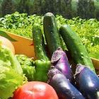 ユニクロ、トヨタも参戦! ドコモが野菜宅配会社を買収した狙い