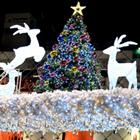 """【特集】ニッポンのクリスマス…""""性""""夜はいずこへ"""