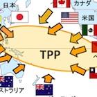 マスコミ報道はコメ問題に終始!? TPP参加に立ちはだかる難題の山 知的財産や保険も不安…