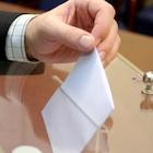 参院選結果で、憲法改正を軸に政界大再編!?民主分裂をさぐる自民の思惑