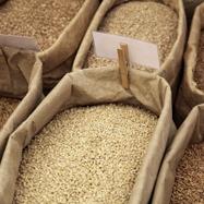 コメ先物取引、正式解禁議論から透ける、加速する農家の農協離れ…価格乱高下の懸念は?