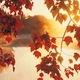 """「読書の秋」のウソと、化粧メイクから透ける""""意外な""""女性心理〜消費動向データから読む"""