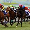 今週末の競馬・日本ダービー、注目の牝馬に課題で大混戦?高精度の異色競馬サイトが分析