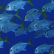 動物虐待か? 漁師が魚にタバコを強要する「喫煙魚動画」、世界中で非難の嵐