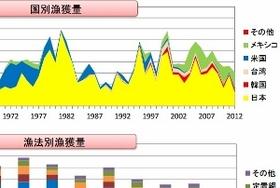 中国、国際ルールを無視し世界中のマグロを獲り尽くす?日本には厳しい漁獲量規制