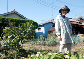 畑仕事に励んでいる高齢者はうつ病になりにくい! 愛知県の医師グループが発表
