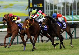 今週末の競馬・阪神ジュベナイルフィリーズと衆院選の意外な関係?大波乱の予兆か
