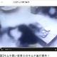 """韓国の""""恥部""""動画流出止まらず…患者蹴り倒す、女児キムチ暴行、床に落ちた料理食え…"""