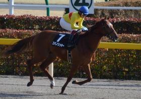 競馬界に黒船襲来!初の外国人騎手誕生、日本人騎手の3割は廃業危機?重要度増す騎手情報