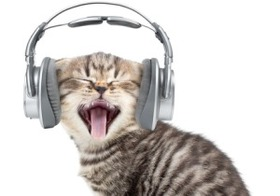 世界の若者の約50%が「ヘッドホン難聴」予備軍! さらに深刻な病のリスクも?