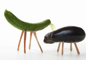 野菜すべてが健康にいいわけではない 栄養のほとんどない野菜も存在する?
