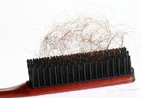 抜け毛と食事には密接な関係が。太く健康な髪の毛に必要な8食品