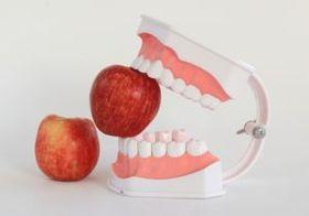 咀嚼不足で口の中にウジが湧くケースも…生活の質を左右する「咀嚼」の世界
