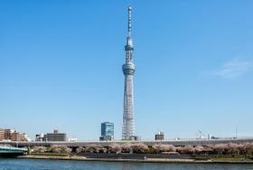 東京スカイツリー、ブーム終焉ショック 東武鉄道が大幅減益