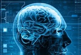 【老化度テスト】あなたの脳は健康? 脳の老化がわかる19の質問