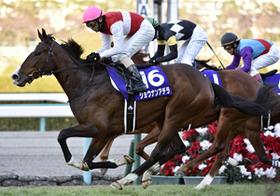 見れば競馬が楽しくなるサイト!波乱必至の阪神JF、各界の著名人がオススメ予想を公開
