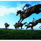 米三冠馬アメリカンファラオの「全妹」がデビュー戦を圧勝!その名も兄が「ファラオ」とくれば当然の......?