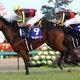 日本ダービー候補筆頭・サトノダイヤモンドも油断できない! ハイレベルな3歳牡馬にまた一頭「超大物」出現か!?
