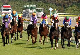 日本ダービーに3頭出し厩舎がふたつ!! 多頭出しは有効な戦略なのか?