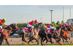 皐月賞馬アルアインの日本ダービー鞍上の「行方」に思い出される、世紀末覇王テイエムオペラオーの時代 人が人を育てる時代は終わったのか?