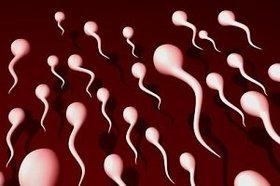 """精子は美肌効果バツグン、調味料にも…!? 学校では教えてくれない""""精子の秘密""""5選"""