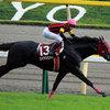 「世界1位」は伊達ではなかった!武豊とエイシンヒカリがイスパーン賞(仏G1)で10馬身以上ちぎったメンバーが世界中で大活躍!