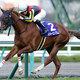 「本命が勝てないレース」桜花賞、断然人気のメジャーエンブレムも微妙?鍵は関西馬か