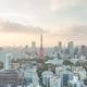 東京、震災時の重大リスク浮上…土地所有区分調査の進捗率わずか2割、復興遅延必至