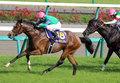 【徹底考察】日本ダービー(G1) ディーマジェスティ「レコード勝ちの皐月賞はフロックなのか? 皐月賞馬の『現在地』を考察」