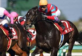 【日本ダービー特別再寄稿】託された思いと飽くなき挑戦。ホースマンの夢を繋いだ日本ダービー馬「絆(キズナ)」の物語<前編>