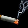 小倉智昭の膀胱がん、喫煙や頭髪用染料で罹患率激増!高年男性の血尿は要注意!尿道から内視鏡