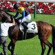 【徹底考察】大阪杯(G1)マカヒキ「キタサンブラック撃破へ鍵を握る『バロメーター』!?  最強世代ダービー馬の完全復活なるか」