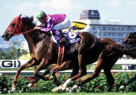 「THE 上がり馬」マーベラスサンデーが老衰で死亡。競馬全盛の時代、稀代のスターとともに刻んだ「記憶」と「激闘」