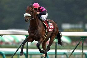 「時代遅れの血筋」に「日本で勝ち切れない欧州種牡馬」を次々と覚醒させるマツリダゴッホは、やはり「狂気の天才芸術家」なのか......競馬界の鬼才がサラブレッド生産の常識を覆す