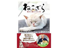 """「猫と同じ墓に入りたい」というケースも…""""ねこでら""""副住職が語る、いま飼い主に求められる覚悟"""