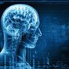 「逃げる」脳…脳は重要な決断時ほど、感情と他人の言葉に左右されるようにできている