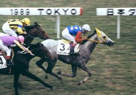 89年日本ダービー馬・ウィナーズサークル30歳で死す。オグリキャップにメジロマックイーン「芦毛最強時代」を彩った1頭