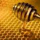 なぜ突然、ミツバチは大量死したのか?女王蜂だけを残し、死骸も発見できず