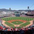 広島カープファンを急増させたメカニズム…プロ野球の「熱狂」から学ぶべきこと