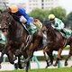 【重賞展望・キーンランドC(G3)】ここでも著しい台頭をみせる『史上最強世代』世代No.1スプリンターとして秋の王座決定戦に挑むのはどの馬か!