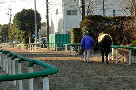 JRA松田大作騎手の騎乗停止満了! 復帰の鍵を握る「あの馬主」の動向は