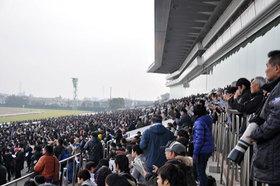 JRAは何故、G1開催週に「特殊な馬場」を作るのか? 中山の皐月賞(G1)敗因が「前走・中山でレースをしたこと」という皮肉な結果に......