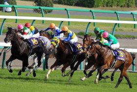 皐月賞(G1)枠順確定。牝馬ファンディーナ、カデナ、スワーヴリチャードの運命の枠番は?