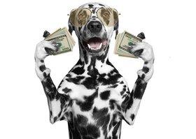 なぜIBMは、驚異的なピカピカ財務?小手先の財務改善が企業を滅ぼす?