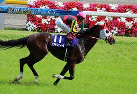 リアルスティール×戸崎圭太の「深イイ話」? 巡り巡ってやってきた中山記念「幻のお手馬」の騎乗チャンスをモノにできるか!? ドバイ連覇へ向けて力を示す一戦。