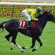 【徹底考察】エリザベス女王杯(G1) パールコード「圧倒的な実績を残す3歳馬。パールコードにも女王の『資格』あり」