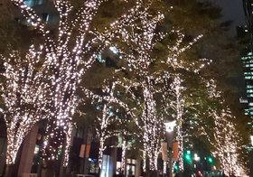 一足早くクリスマス気分!丸の内でイルミネーション点灯!オススメの鑑賞ポイントはココ!