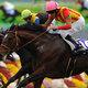 なぜ関東の馬は圧倒的に弱いのか?関西馬の精密な情報が「馬券の勝ち組」へのカギ!
