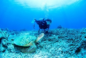 「夢の沖縄移住生活」のまやかし…8割は本土へ戻る、生活コスト高く地元住民とトラブルも