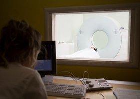 がん医療が飛躍的に進歩でも、年々がん死亡者増加という不都合な真実…がんの定説が間違っている疑い